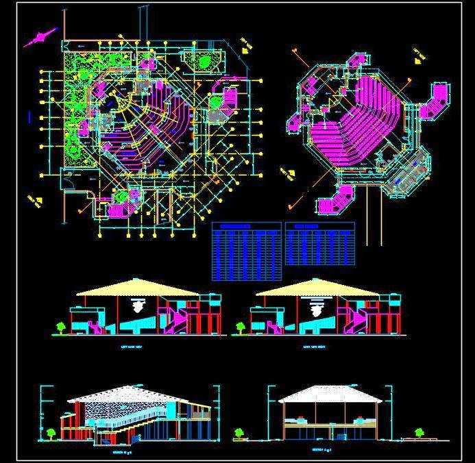 Auditorium Plan, Elevation and Section DWG Drawing download