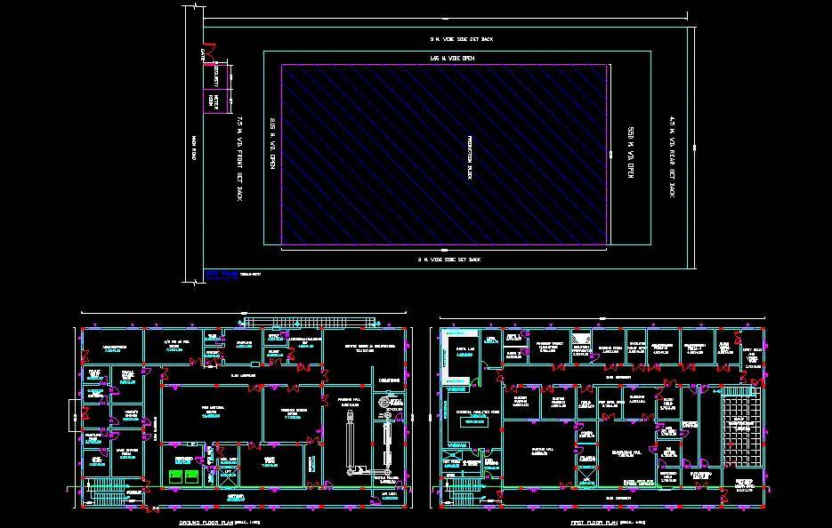 Pharmaceutical Industry Professional Space Planning