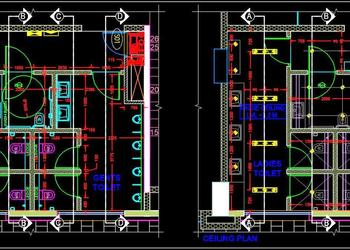 Public Toilet Layout and Ceiling Cad Plan