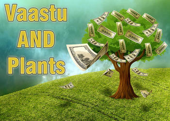 Vaastu Guidelines for Planting Trees and Plants