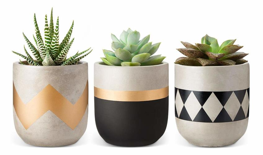Mkono 4 Inch Cement Succulent Planter Modern Flower Pots Concrete Planter Indoor for Cactus Herb or Small Plants Home Decor Gift Idea, Set of 3