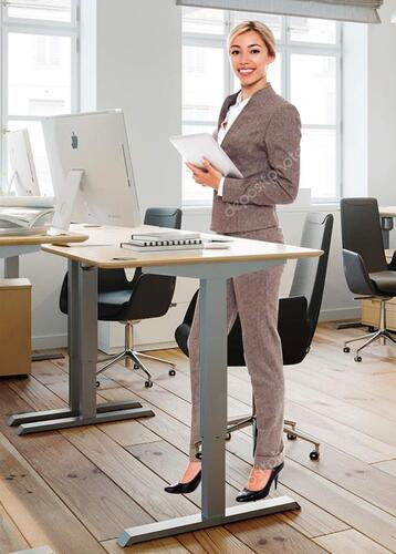 RIFE electric height adjustable standing desk