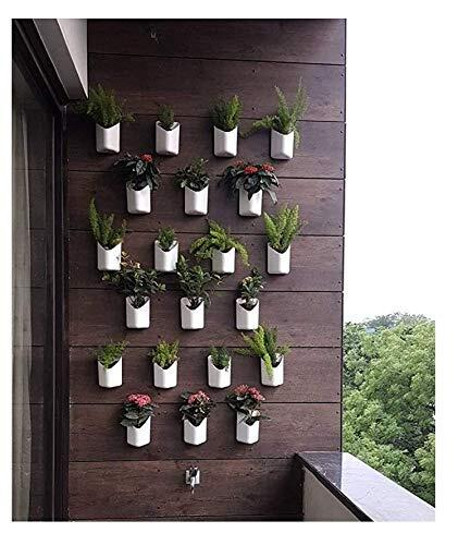 Planters Blume Prism Indoor and Outdoor Wall Hanging Planter